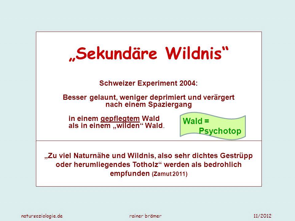 """""""Sekundäre Wildnis Wald = Psychotop Schweizer Experiment 2004:"""