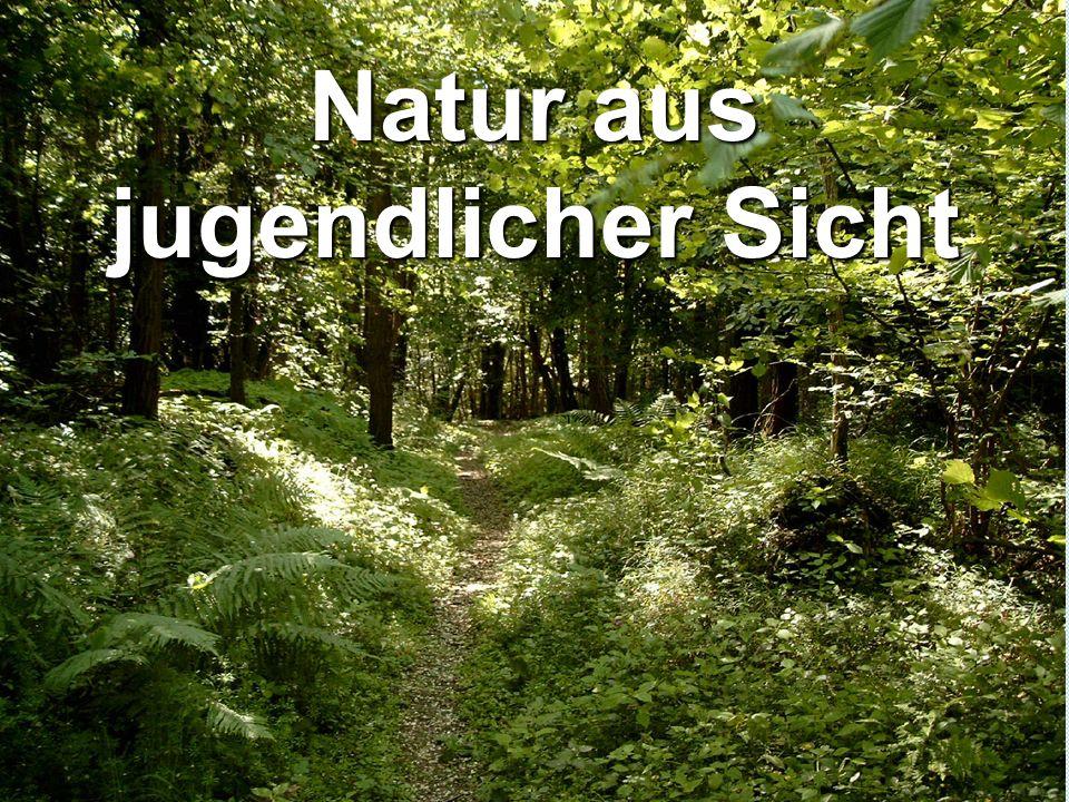 Natur aus jugendlicher Sicht