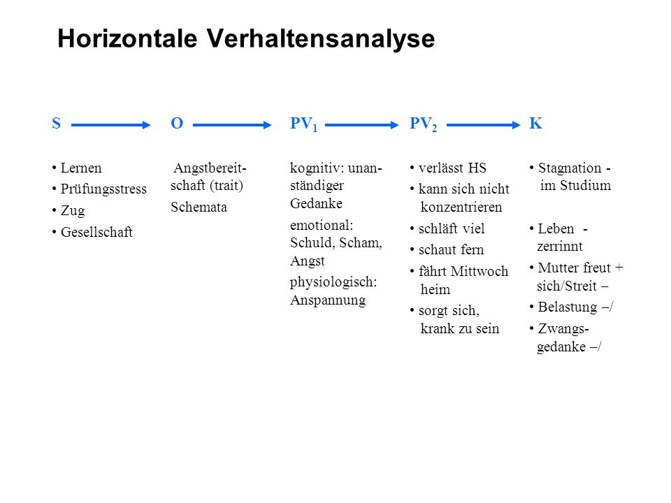 Horizontale Verhaltensanalyse