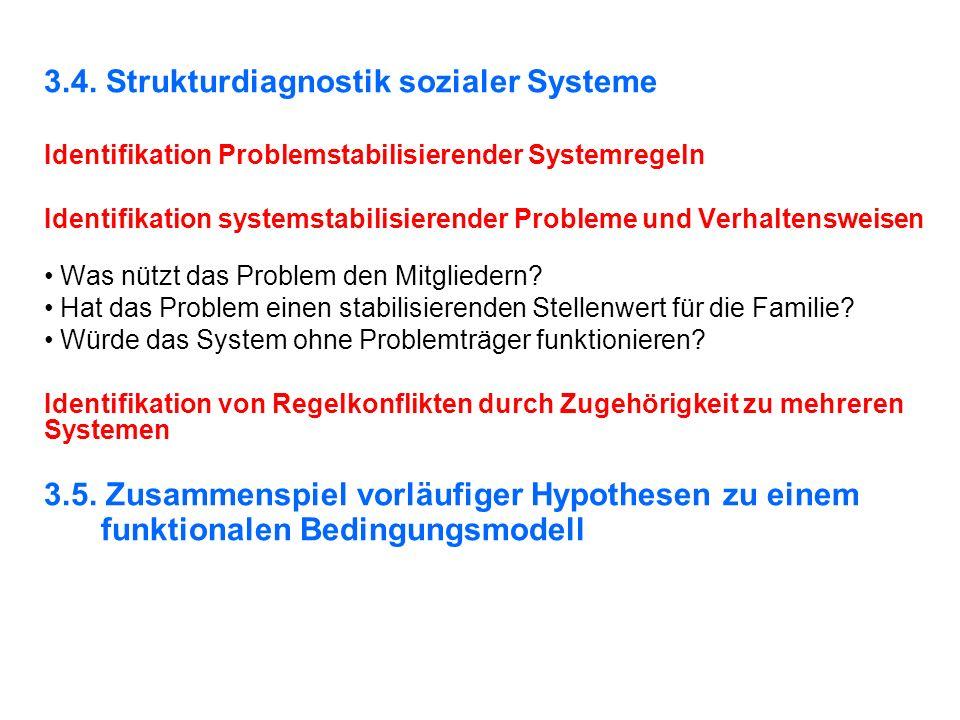 3.4. Strukturdiagnostik sozialer Systeme