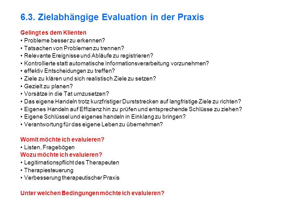 6.3. Zielabhängige Evaluation in der Praxis