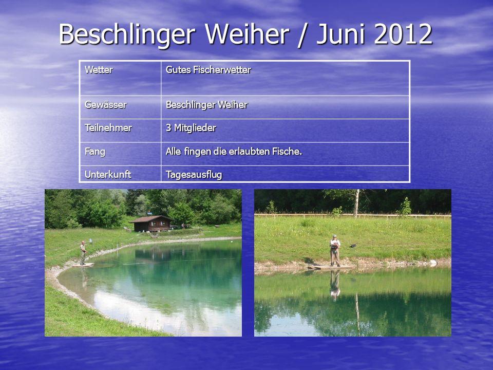 Beschlinger Weiher / Juni 2012