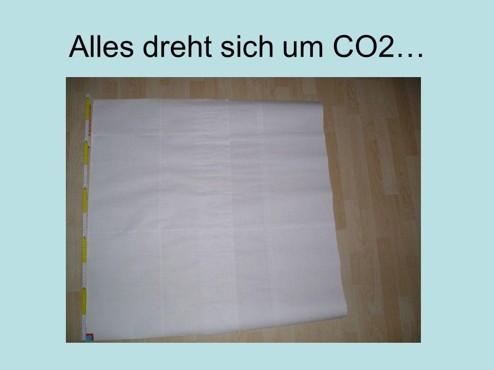 Alles dreht sich um CO2…