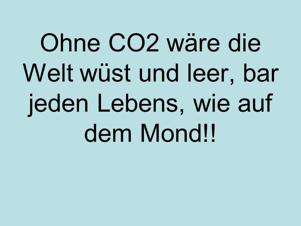 Ohne CO2 wäre die Welt wüst und leer, bar jeden Lebens, wie auf dem Mond!!
