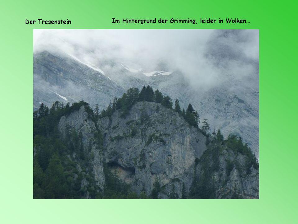 Der Tresenstein Im Hintergrund der Grimming, leider in Wolken…