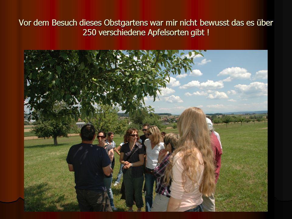 Vor dem Besuch dieses Obstgartens war mir nicht bewusst das es über 250 verschiedene Apfelsorten gibt !