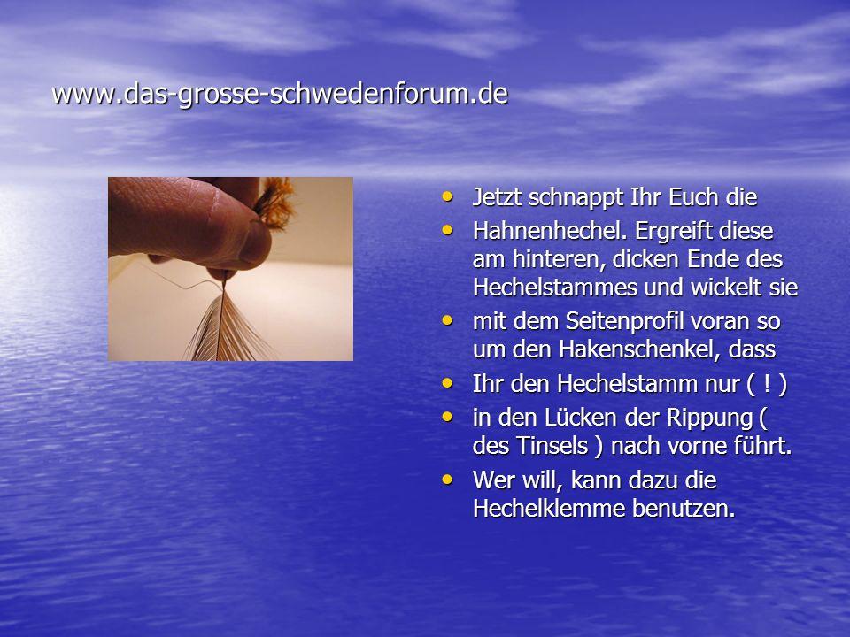www.das-grosse-schwedenforum.de Jetzt schnappt Ihr Euch die
