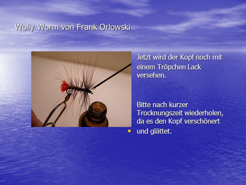 Wolly Worm von Frank Orlowski
