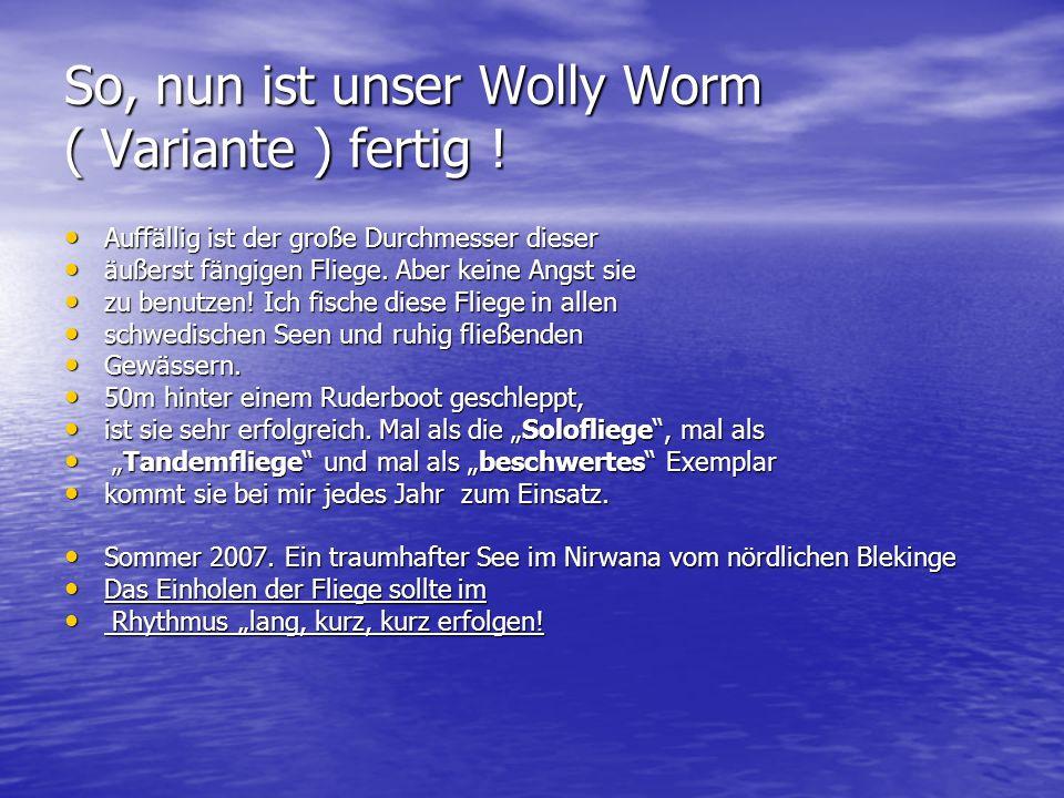 So, nun ist unser Wolly Worm ( Variante ) fertig !