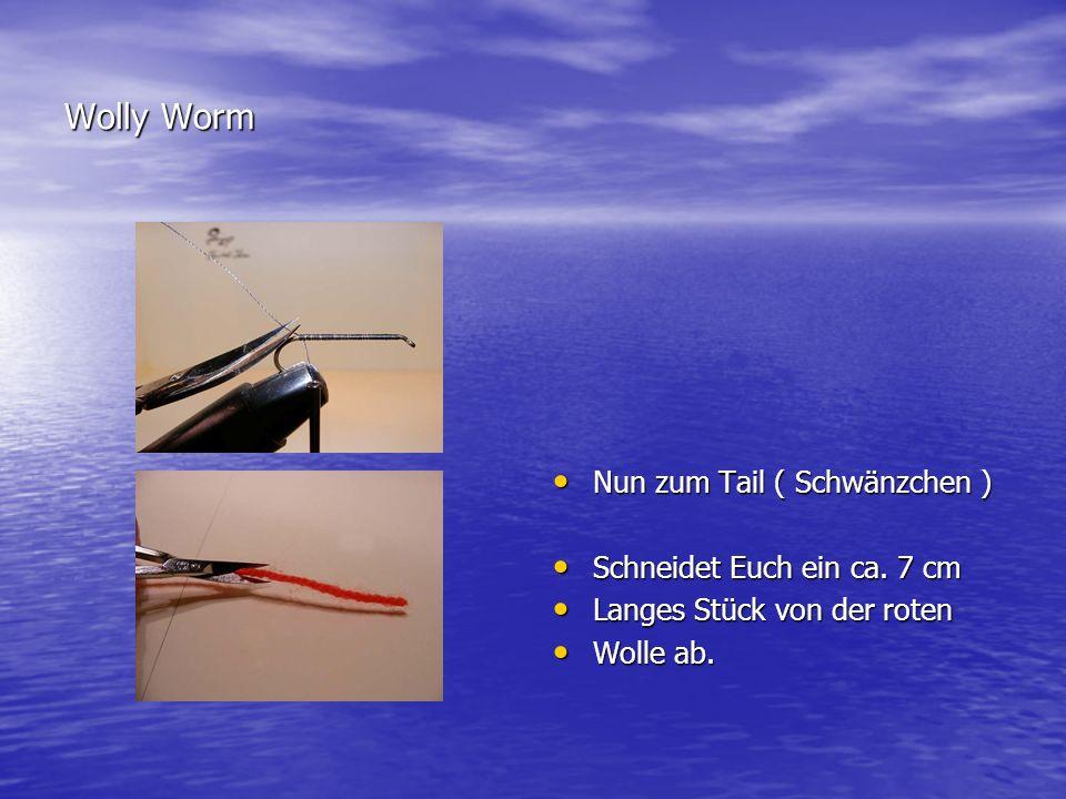 Wolly Worm Nun zum Tail ( Schwänzchen ) Schneidet Euch ein ca. 7 cm
