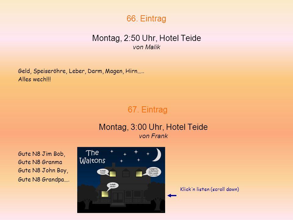 66. Eintrag Montag, 2:50 Uhr, Hotel Teide von Malik