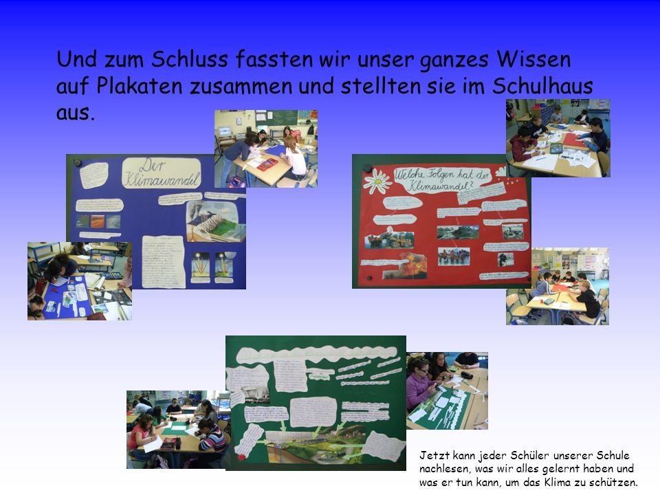 Und zum Schluss fassten wir unser ganzes Wissen auf Plakaten zusammen und stellten sie im Schulhaus aus.