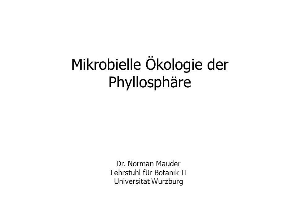 Mikrobielle Ökologie der Phyllosphäre
