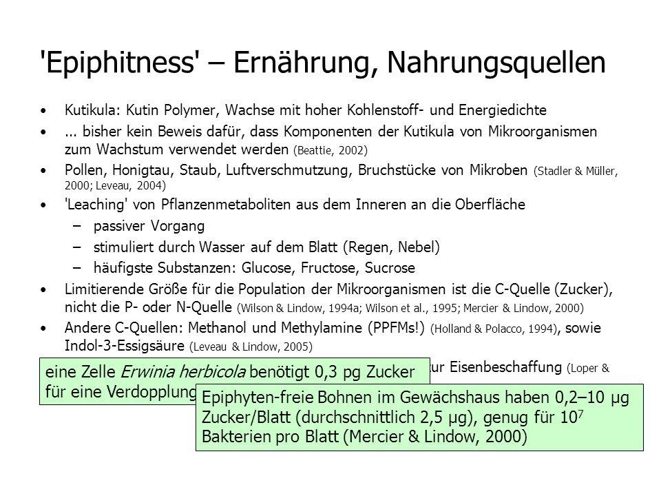 Epiphitness – Ernährung, Nahrungsquellen