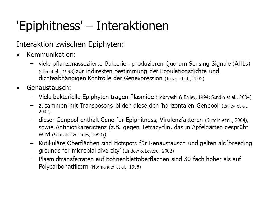 Epiphitness – Interaktionen