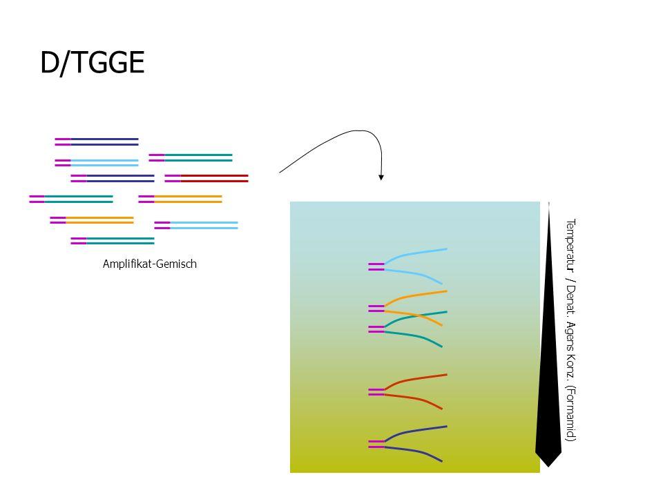 D/TGGE Temperatur / Denat. Agens Konz. (Formamid) Amplifikat-Gemisch