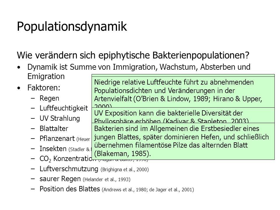 Populationsdynamik Wie verändern sich epiphytische Bakterienpopulationen Dynamik ist Summe von Immigration, Wachstum, Absterben und Emigration.