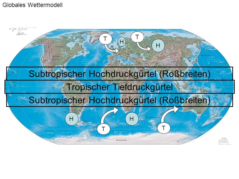 Subtropischer Hochdruckgürtel (Roßbreiten) Tropischer Tiefdruckgürtel