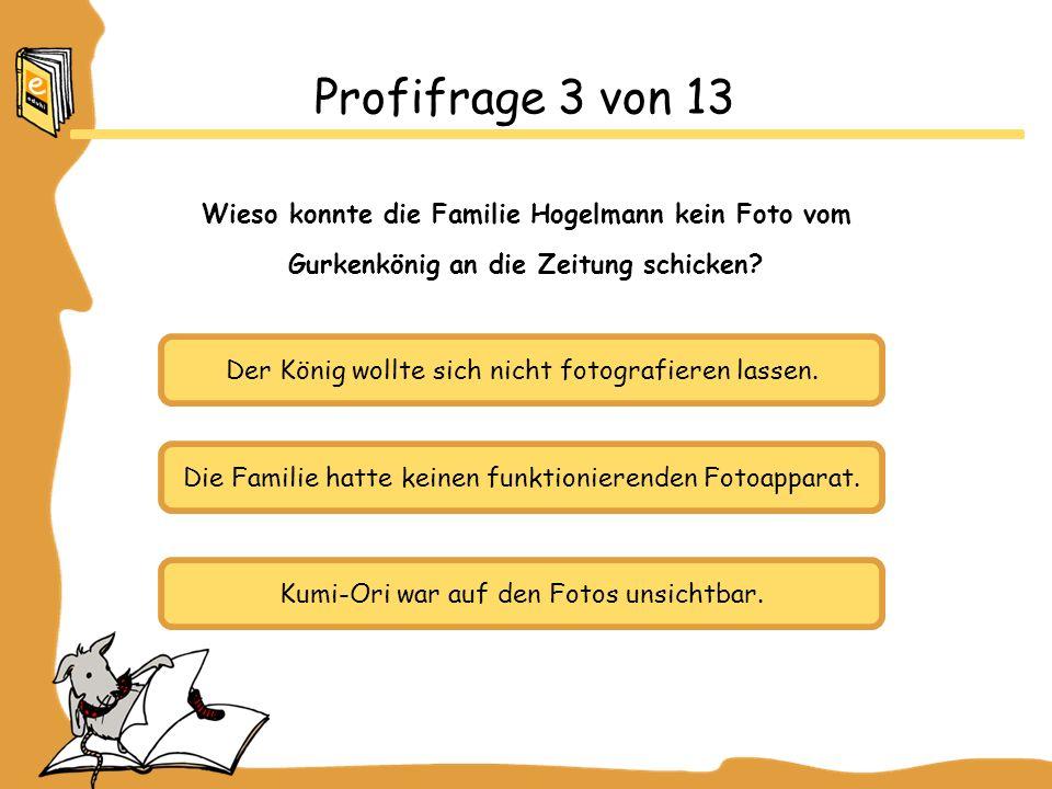 Profifrage 3 von 13 Wieso konnte die Familie Hogelmann kein Foto vom