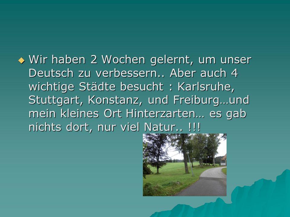 Wir haben 2 Wochen gelernt, um unser Deutsch zu verbessern