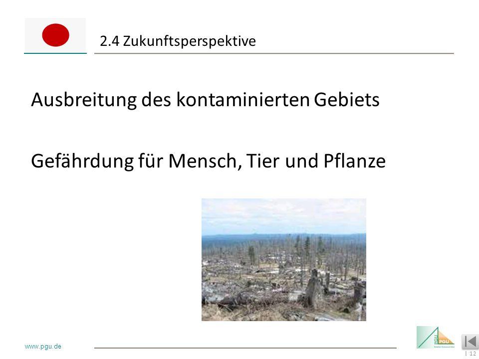 2.4 Zukunftsperspektive Ausbreitung des kontaminierten Gebiets Gefährdung für Mensch, Tier und Pflanze