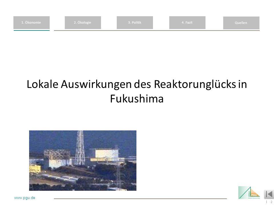 Lokale Auswirkungen des Reaktorunglücks in Fukushima