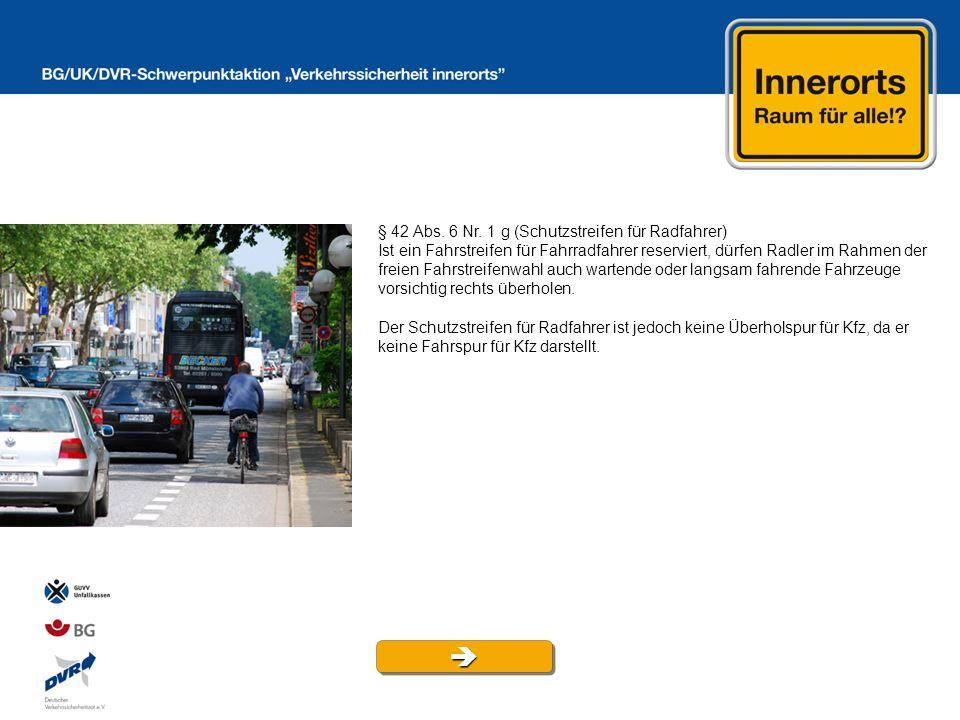  § 42 Abs. 6 Nr. 1 g (Schutzstreifen für Radfahrer)