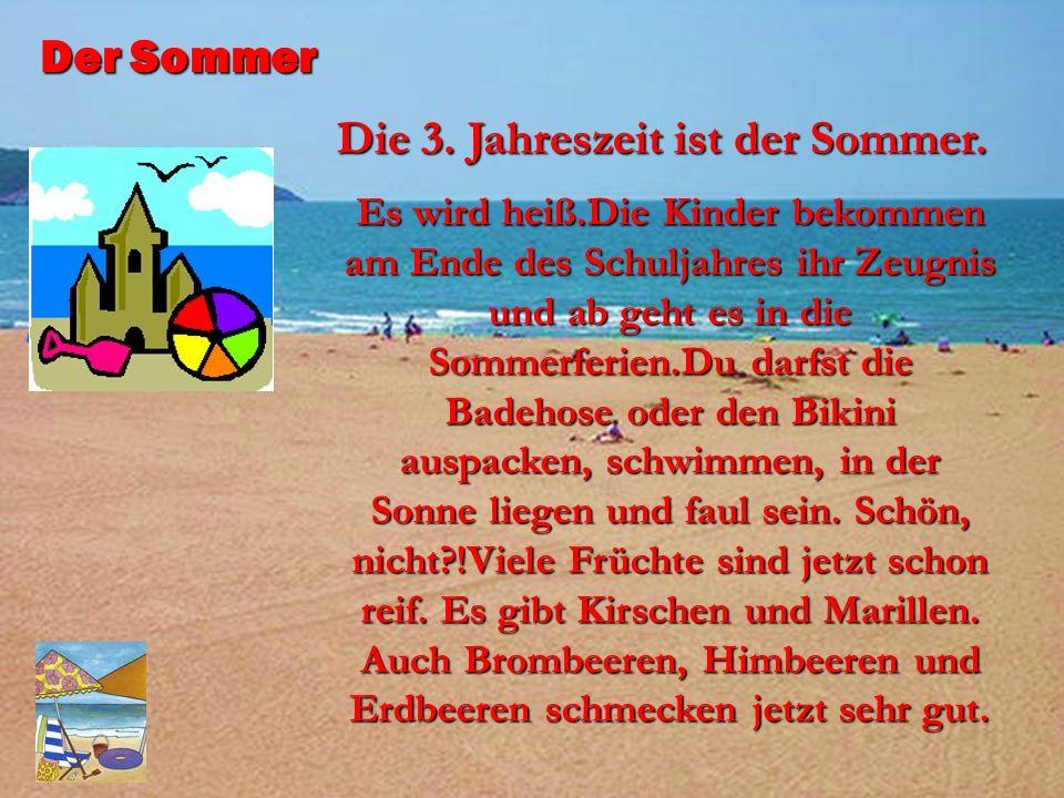Die 3. Jahreszeit ist der Sommer.