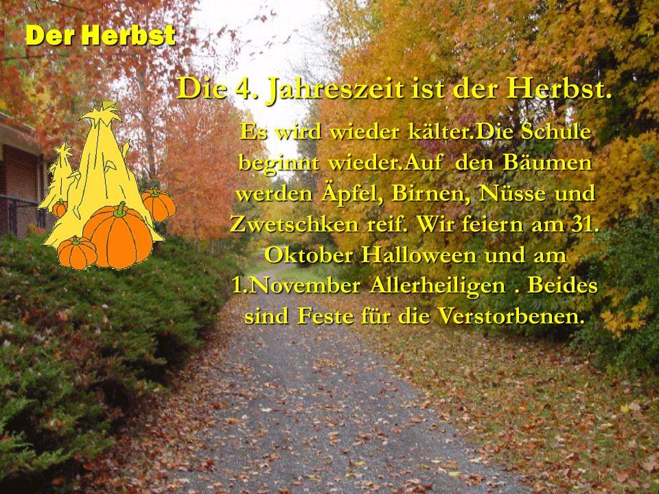 Die 4. Jahreszeit ist der Herbst.