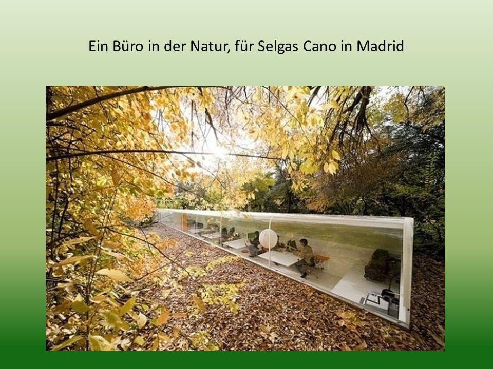 Ein Büro in der Natur, für Selgas Cano in Madrid