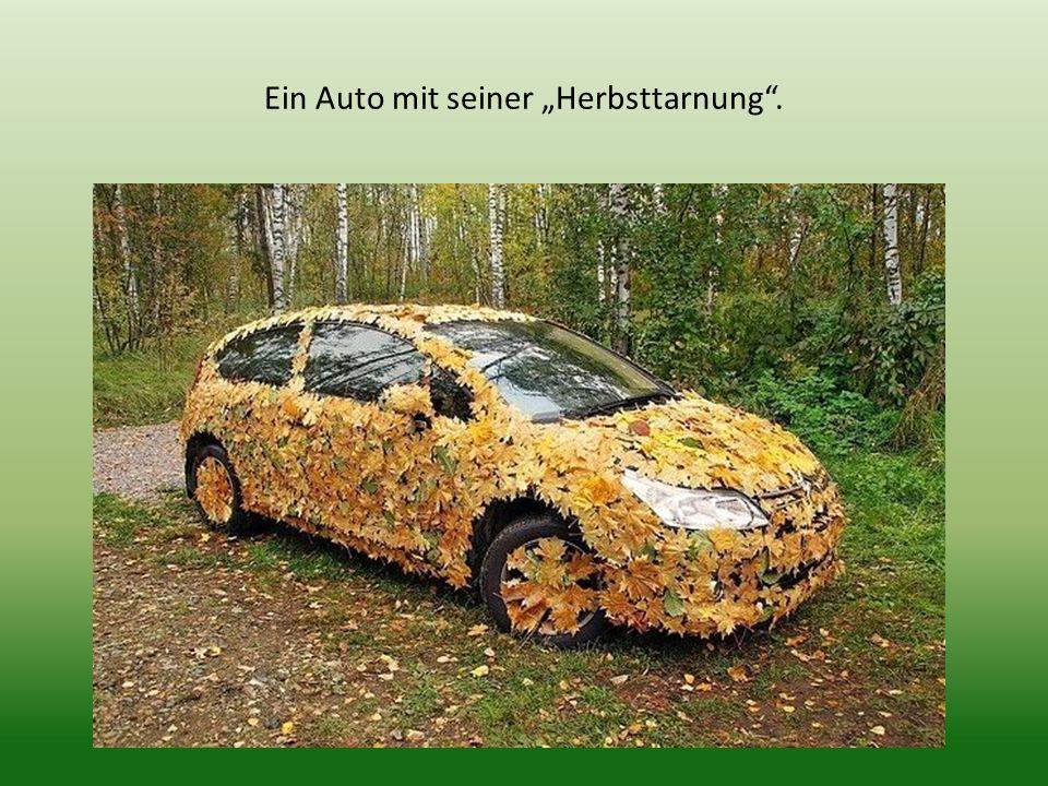 """Ein Auto mit seiner """"Herbsttarnung ."""
