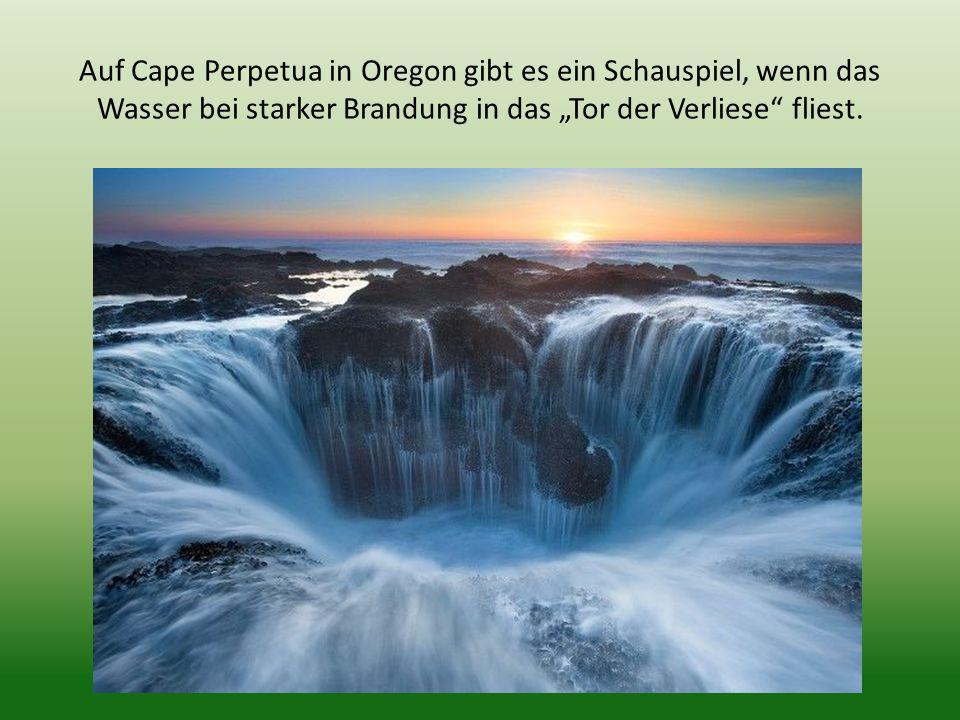 """Auf Cape Perpetua in Oregon gibt es ein Schauspiel, wenn das Wasser bei starker Brandung in das """"Tor der Verliese fliest."""