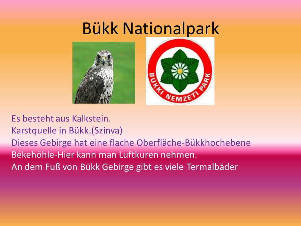Bükk Nationalpark Es besteht aus Kalkstein.