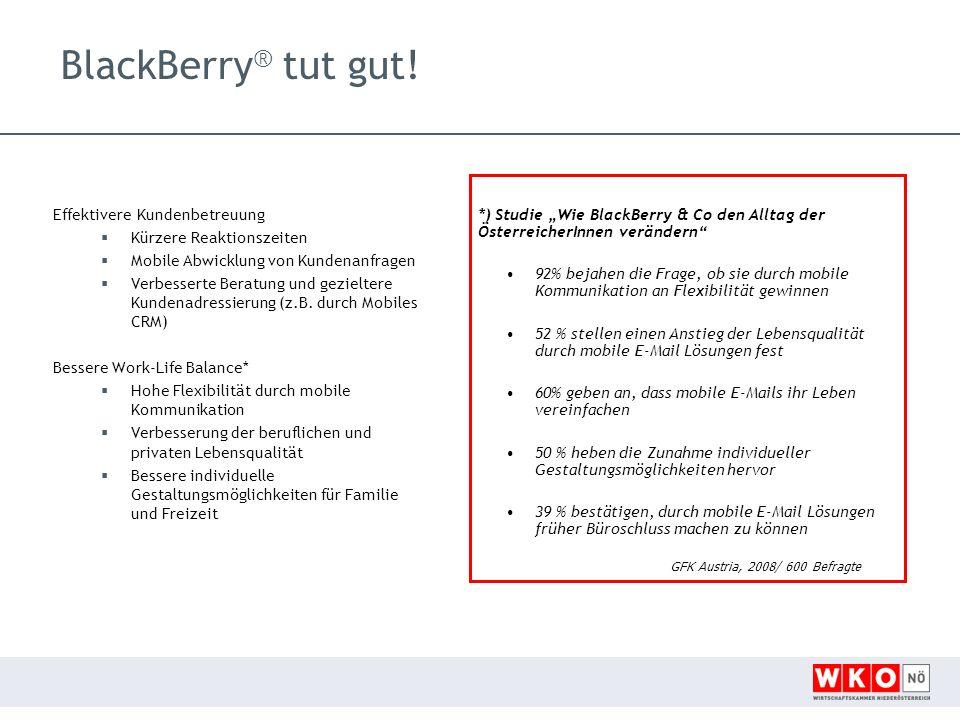 """BlackBerry® tut gut! *) Studie """"Wie BlackBerry & Co den Alltag der ÖsterreicherInnen verändern"""