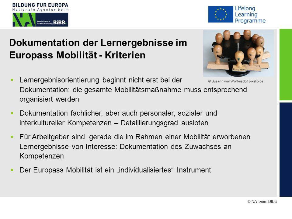 Dokumentation der Lernergebnisse im Europass Mobilität - Kriterien