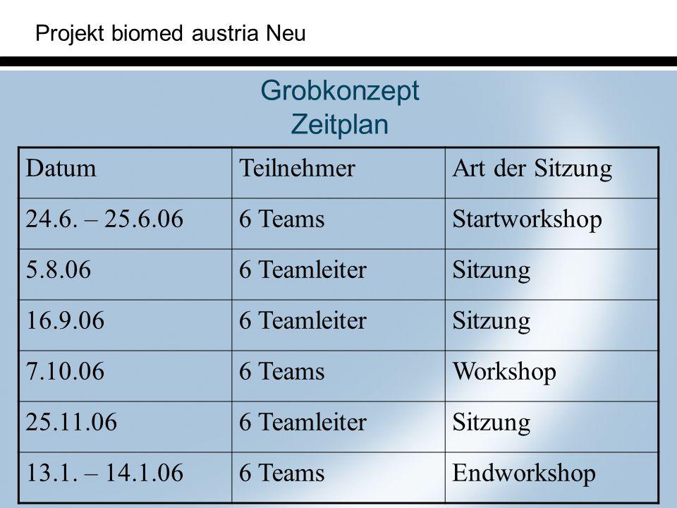Grobkonzept Zeitplan Datum Teilnehmer Art der Sitzung 24.6. – 25.6.06