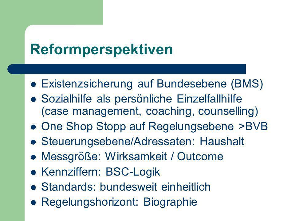 Reformperspektiven Existenzsicherung auf Bundesebene (BMS)