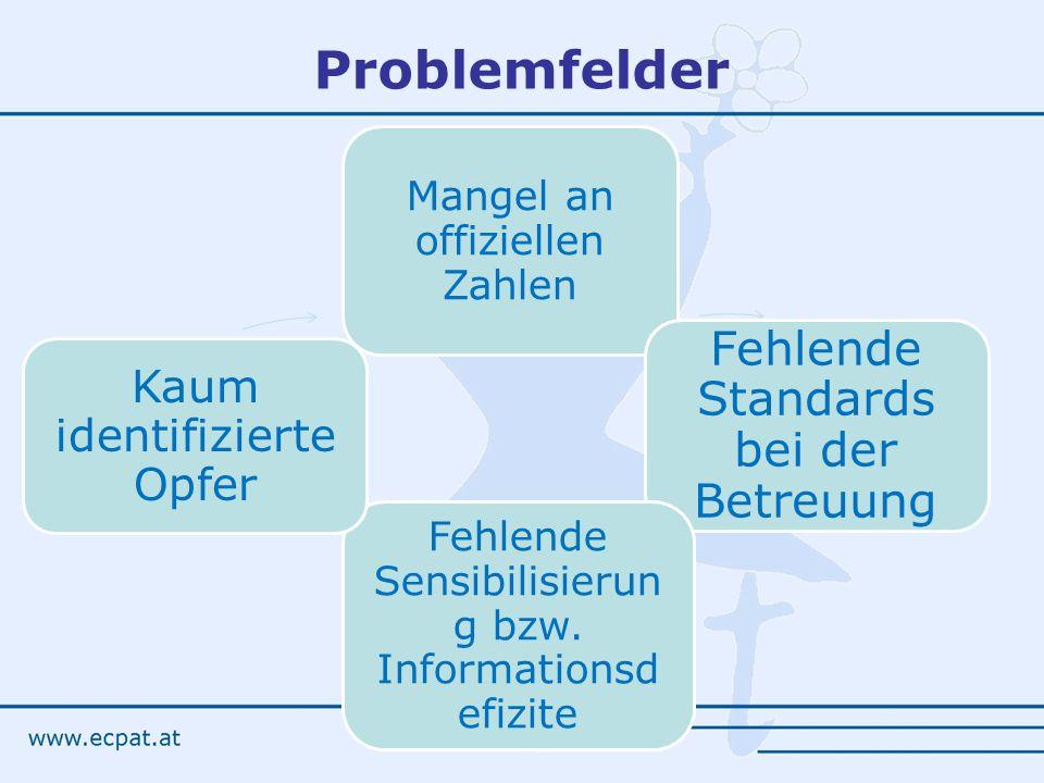 Problemfelder Fehlende Standards bei der Betreuung