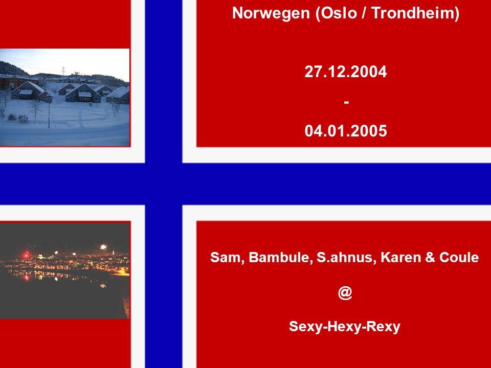 Norwegen (Oslo / Trondheim) Sam, Bambule, S.ahnus, Karen & Coule