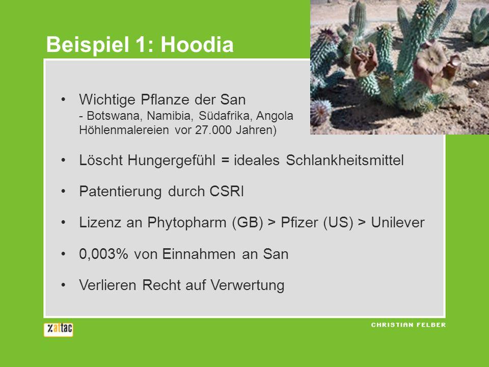 Beispiel 1: Hoodia