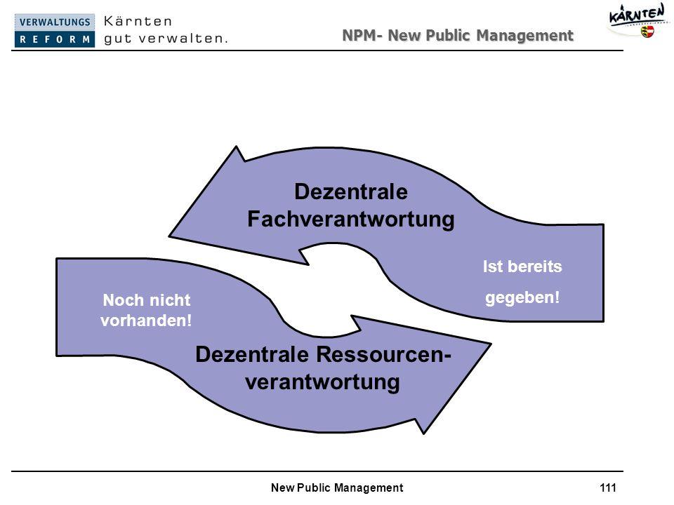 Dezentrale Fachverantwortung Dezentrale Ressourcen- verantwortung