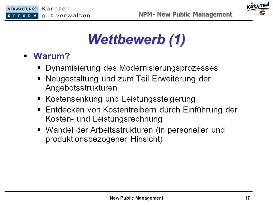 Wettbewerb (1) Warum Dynamisierung des Modernisierungsprozesses