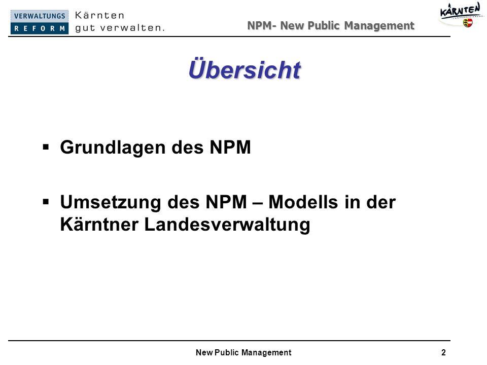 Übersicht Grundlagen des NPM