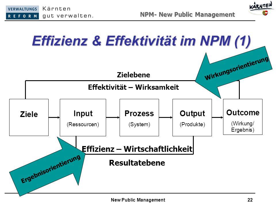 Effizienz & Effektivität im NPM (1)