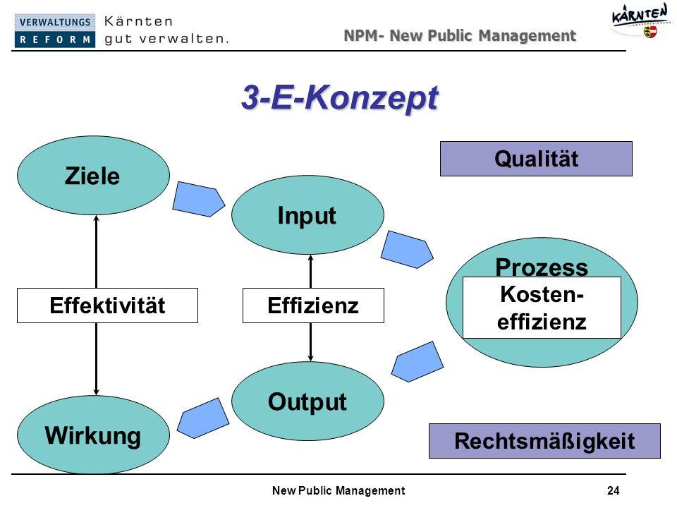 3-E-Konzept Ziele Input Prozess Output Wirkung Qualität