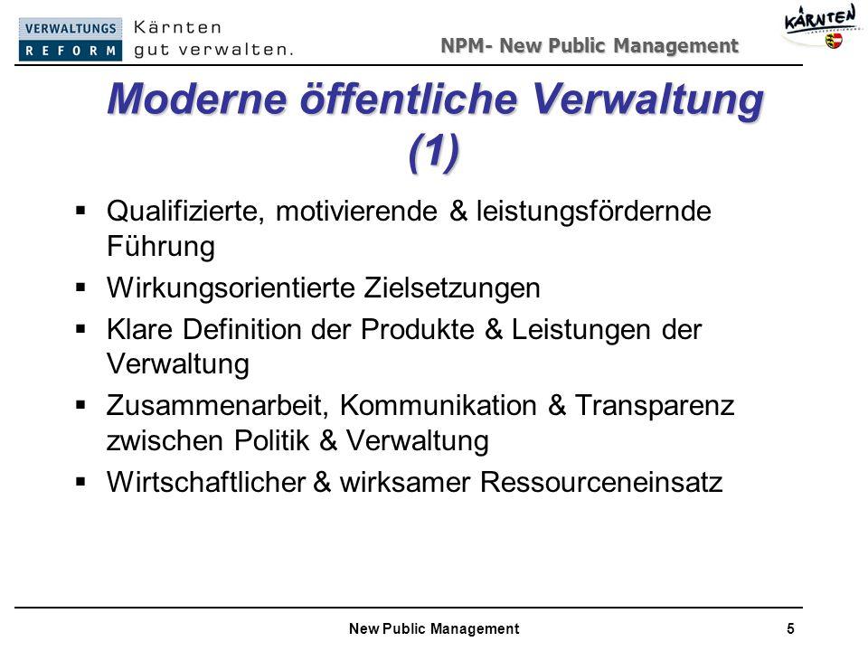 Moderne öffentliche Verwaltung (1)