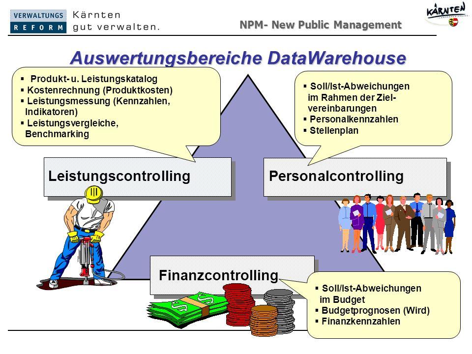 Auswertungsbereiche DataWarehouse