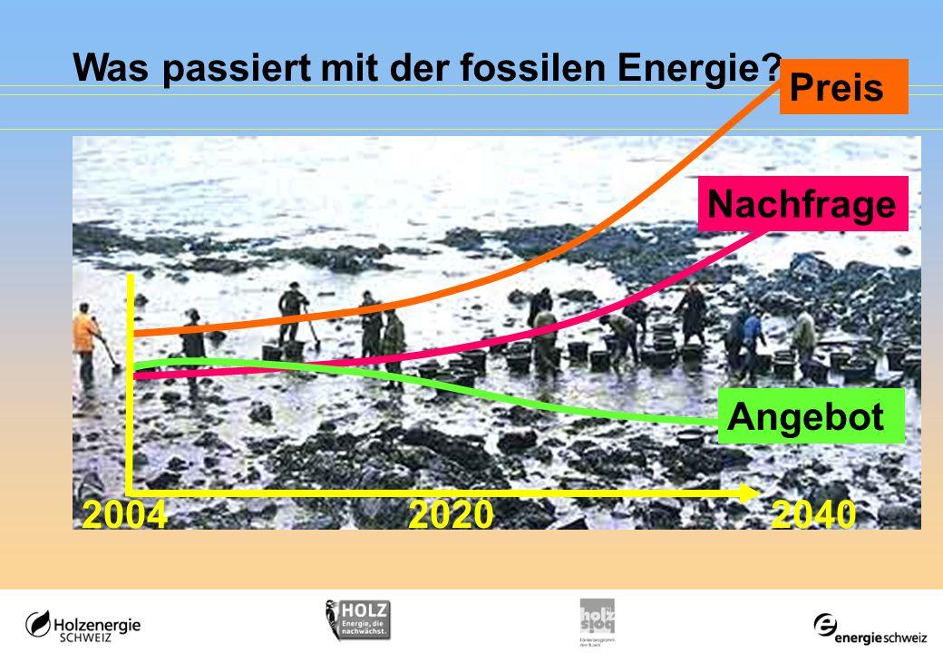 Was passiert mit der fossilen Energie