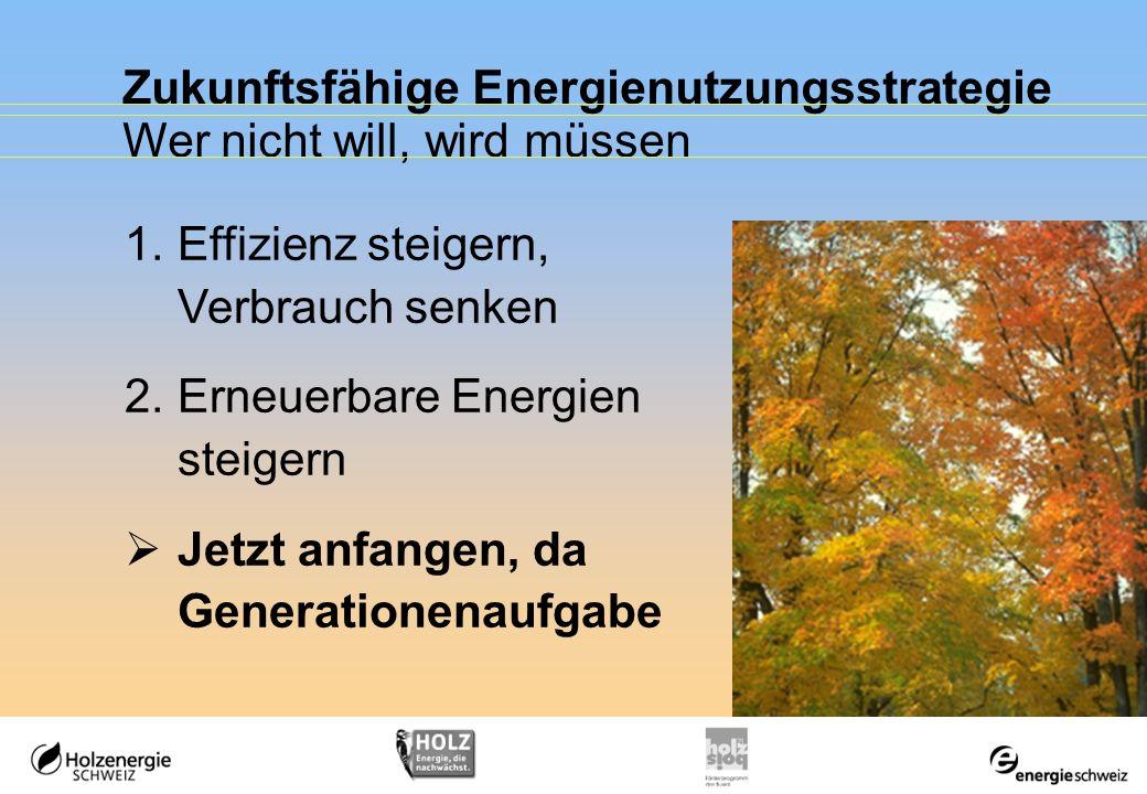 Zukunftsfähige Energienutzungsstrategie
