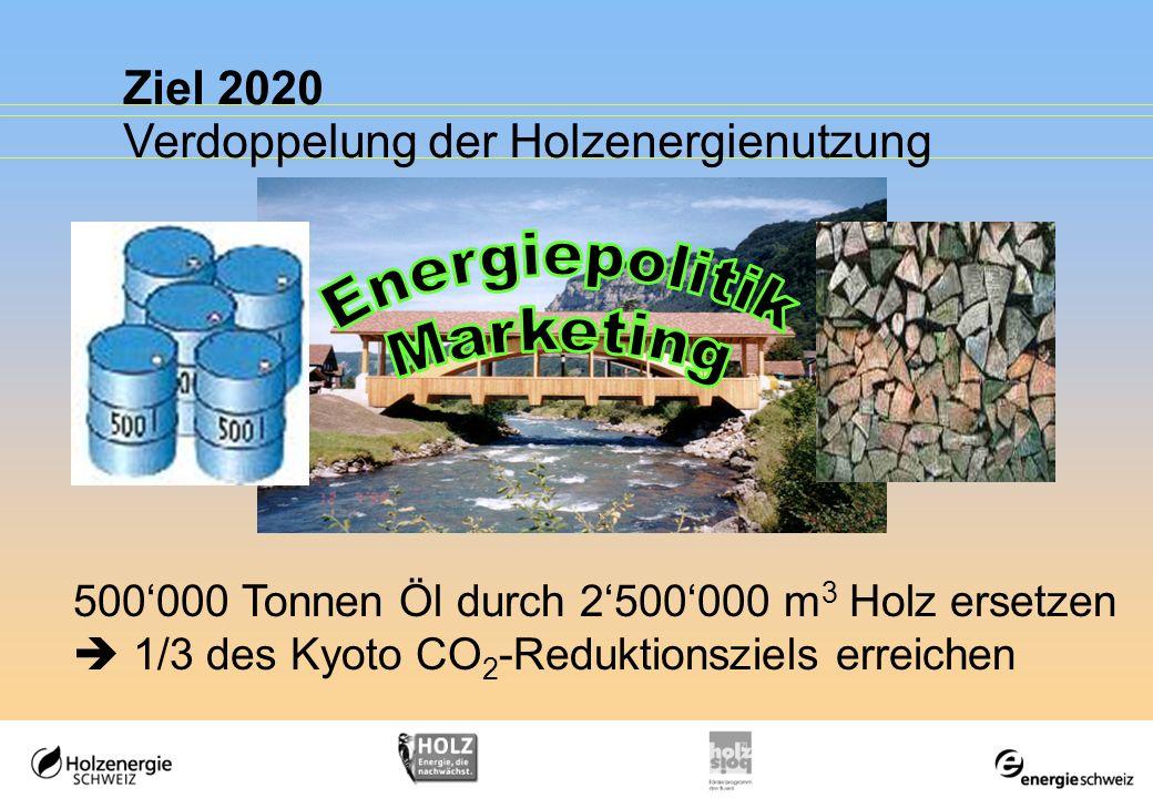 Energiepolitik Marketing Ziel 2020 Verdoppelung der Holzenergienutzung
